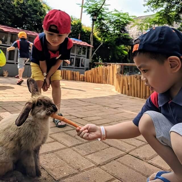 Scientia Square Park - Rabbit tales (scientiasquarepark)