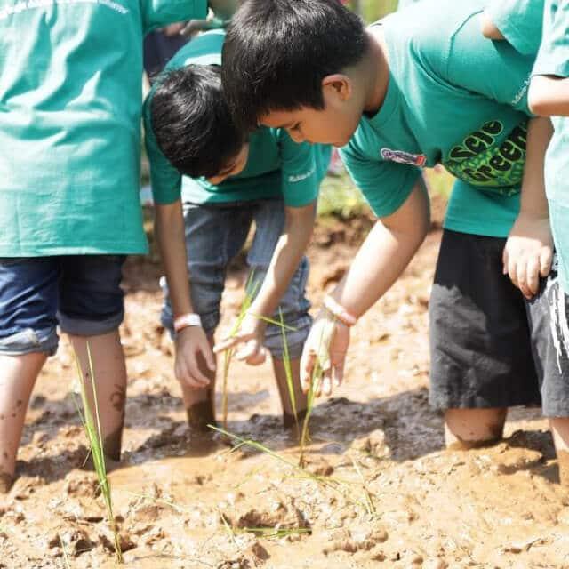 Scientia Square Park - Zona farm and sustainability (scientiasquarepark)
